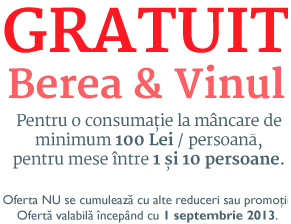 mesaj-marketing-gratuit-bere-vin